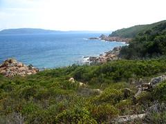 Sentier côtier Rondinara - Balistra : le chemin vers U Marescu
