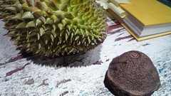 durian, paradise nut husk, book