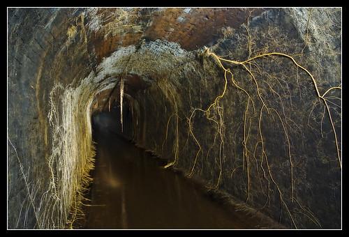 Underground_12