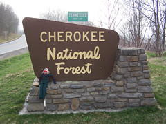 Cherokee National Forest (Bitmapped) Tags: usa unitedstates tennessee northcarolina johnsoncity monroecounty cherokeenationalforest washingtoncounty tapoco tellicoplains loganthesockmonkey
