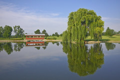Across Dads Pond (Reiffhaus (Steppin It Up!!)) Tags: tup golddragon theunforgettablepictures landscapesdreams grouptripod