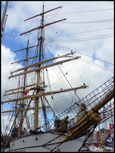 Tall Ships' Races 1