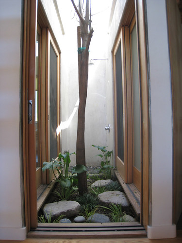 Pocket Courtyard