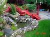 Pond w/ new stairs (NYMatt) Tags: flowers plants stairs waterfall backyard stonework maine ponds stonewalls westbrookmaine nikographer