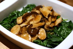 King oyster mushroom and kai lan in oyster sauce