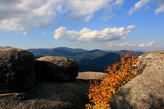 Yellow and some boulders (matt house) Tags: autumn fall yellow virginia hiking boulders canonef1740mmf4lusm oldragmountain shenandoahnationalpark