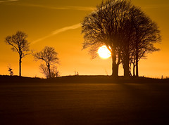 Sunset (Matt Gayton) Tags: trees winter sunset shadow red england orange cloud sun sunlight mist plant black detail tree texture sol nature field grass weather silhouette yellow clouds contrast photoshop sunrise canon fence dark landscape eos mono golden evening saturated bush focus contrail glow moody colours shadows cross angle walk horizon low hill atmosphere shades hills ridge hues hedge crop dreams fields 5d lonely 28 wiltshire desolate bushes devizes 70200 atmospheric gayton roundwayhill witshire roundway