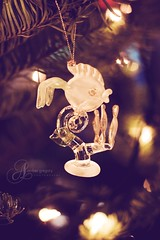Many men go fishing all of their lives without knowing it is not fish they are after (amber {in the shadow of za'ha'dum}) Tags: christmas pink holiday tree vertical lights bokeh explore ornament 2008 notmycamera 50mmf18 scottscamera bokehwednesdayeve prettypinktuesday lilybluecoralactionx2