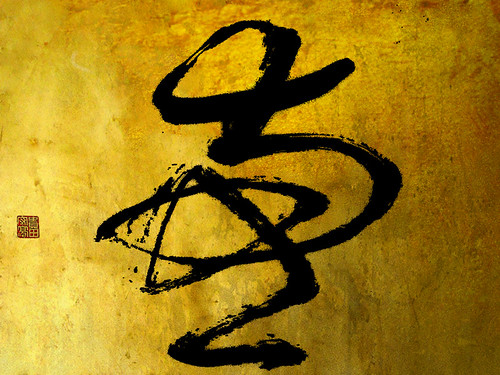 """zen_graphia_66 • <a style=""""font-size:0.8em;"""" href=""""http://www.flickr.com/photos/30735181@N00/3118414794/"""" target=""""_blank"""">View on Flickr</a>"""