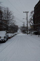 Belmont Ave from Union St