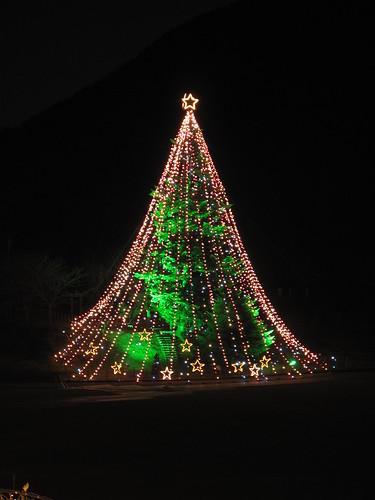 宮ヶ瀬のジャンボクリスマスツリー