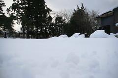 IMG_0917 (shinyai) Tags: snow japan aomori hirosaki
