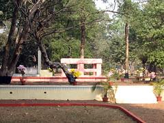 Chhatim Tala (paulancheta) Tags: india tree campus university sa westbengal tagore santiniketan visvabharati