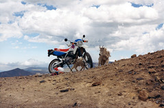 Argentine Pass, Colorado (twm1340) Tags: travel mountain argentine forest honda colorado offroad pass goat 1993 national whiteriver co motorcycle xr650l
