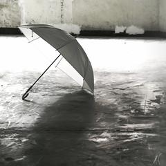 _泥濘。 (eliot.) Tags: life live hsinchu taiwan eliot 家族合照 印刻文學 午后天光 無用之墟 孤傘 周志文