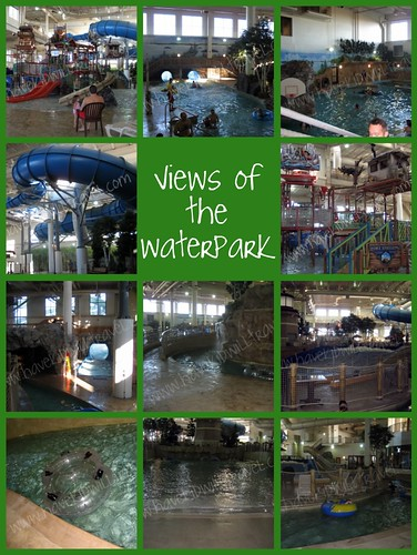Waterpark of America collage