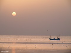 Beautiful Sunrise (Waleed Ibrahem) Tags: beautiful sunrise                          platinumphoto