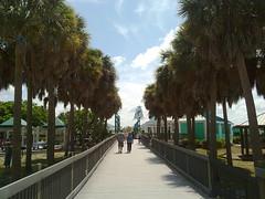 06112011594-Bowditch-Point-Boardwalk