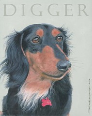 "Digger - Acrylic on canvas • <a style=""font-size:0.8em;"" href=""http://www.flickr.com/photos/64357681@N04/5867042030/"" target=""_blank"">View on Flickr</a>"