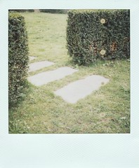gateway (So gesehen.) Tags: green home grass polaroid switzerland stones zurich sunday lofi spots scanned hedges polaroidlandcamera friesenberg polaroid600film polaroid2000 sx70moddedfor600