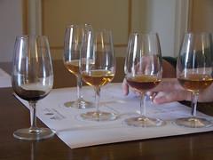 Sicily > Marsala > Florio > Wine Tasting