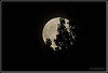Moon Illusion: Howl at the moon (chickentinola) Tags: fullmoon moonillusion nikond40 nikkor15200vr