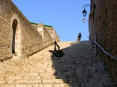 No vaya a ser... (caminanteK) Tags: camino loire escaleras blois escaliers touraine châteauxdelaloire chemindesaintjacques viaturonensis etapejacquaire chamindetours