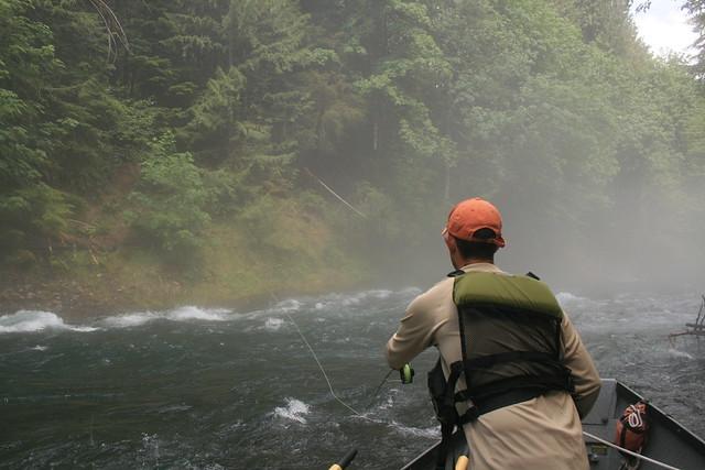 Upper McKenzie River Trip 2008