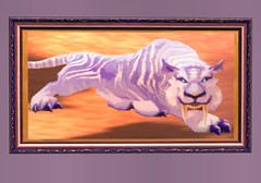 Purple Tiger Picture