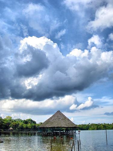 Quistococha, Iquitos - Perú por Jorge_AR.