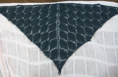 LeafShawlProgress