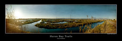 Heron Bay Trails (simpsonyiu.com) Tags: sf california sunset texture heron water grass race training photoshop canon eos 50mm bay coast photo los san day leo angeles photos framed widescreen awesome august yay running panoramic nike east human area 10k 5d plus 24 jogging 2008 31 leandro merge 31st dro cs3 reppin sfbas nikepluscom simpsonyiucom