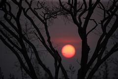 Sunset 08/30