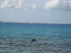 IMG_0478 (beastiedimples) Tags: caymans