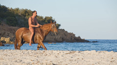 Feeling nature (Fredographie) Tags: sea mer france beach cheval corse corsica riding nudist plage equitation naturiste nudiste culnu