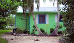 Beach House (Ed Hagelstein) Tags: blue roof sea white house green beach metal palms island pentax florida mint palm grapes shutters trim sanibel sanibelisland k10d