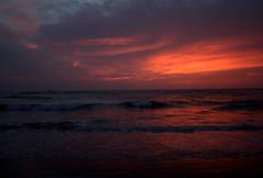 Good Evening (Cairo Dusk) Tags: india beach canon relax peace tranquility backpacking gokarna traveling karnataka travelers backpackers arabiansea coastalindia coastalkarnataka uttarakannada kudlebeach ombeach canon300d