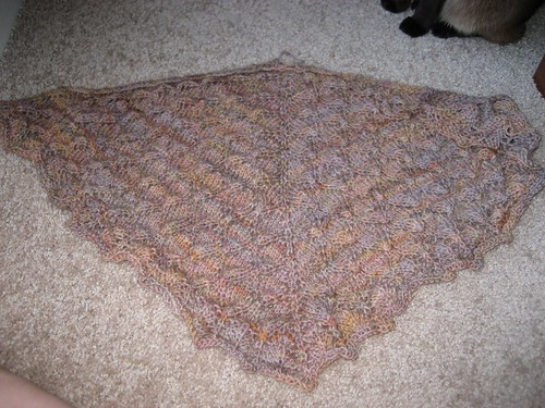 Forest Canopy Shawl - Unblocked