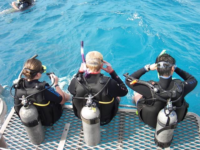Cairns Padi Open Water Dive