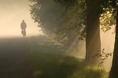 into the light (beeldmark) Tags: mist holland nature netherlands bicycle fog landscape geotagged cycling haze europa europe utrecht cyclist nederland commute commuting hazy sunrays fietsen nieuwegein fiets オランダ 自転車 forens zonnestralen ochtendmist zonneharp k10d pentaxk10d ddd2 tamronaf18250mmf3563diiildasphericalifmacro tamron18250 dedoka beeldmark fietsverkeer filevrijedag lpbicycles dolledokadonderdag naarjewerkopdefiets geo:lat=52060908 geo:lon=5087445 intothesummerlight