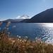 富士山:Motosu Lake with Mt.Fuji.