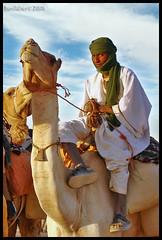 "Rakel Said :  it's ""Suspicious Look!"" (Bashar Shglila) Tags: sahara face ride desert sudan camel camello  supershot dongola addictedtoflickr   platinumphoto anawesomeshot citrit goldstaraward bentaher"