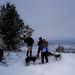 Snowshoeing - Moore Park