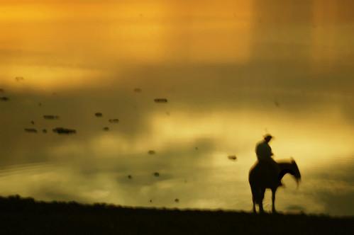 Paz e reflexão : )