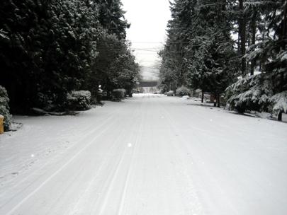 Snowed Road