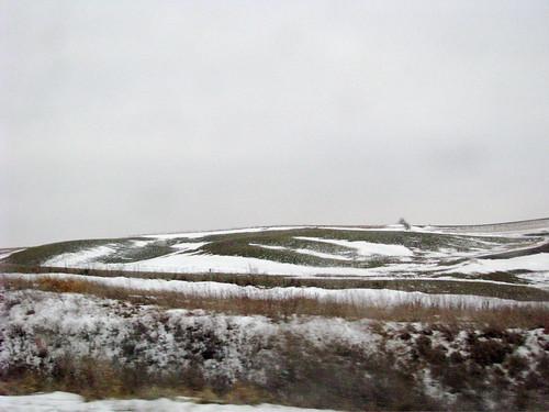 Rolling Hills of Iowa