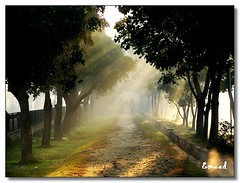 The Beginning..... (Emaad) Tags: new morning pakistan flickr january first olympus beginning rays punjab shafts 2009 lahore happynewyear oly thebeginning classique emaad lightshaft lhe colorphotoaward 010109 overtheexcellence concordians goldstaraward olympuscolours olympusrocks getolympus geo:locality=lahore olympusc olympusbest