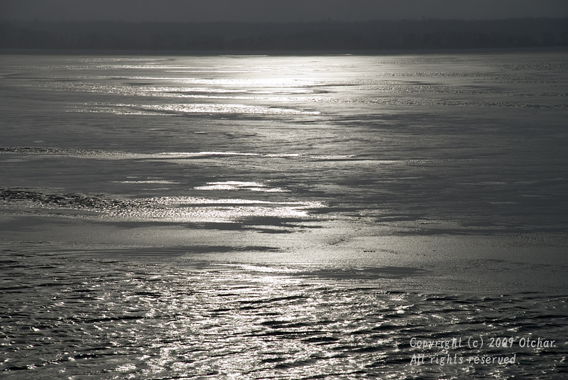 Silver Surface of the Sea