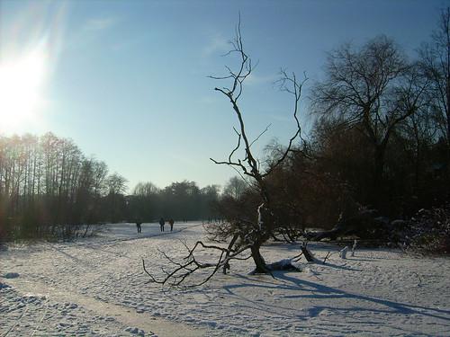 Inselchen im Hermsdorfer See