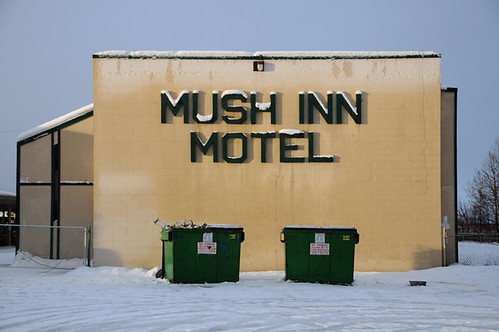 mush in motel_1481 web